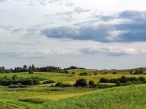 与绿色多小山草甸的农村风景 免版税库存照片