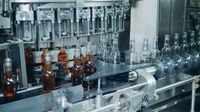 与瓶的填装的机制工作,填装的过程 威士忌酒,刻痕,波旁酒生产 股票视频