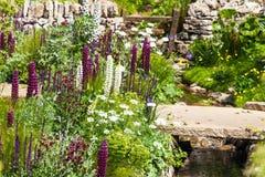 与白色紫色花和小河的美好的庭院风景 图库摄影
