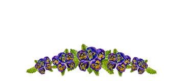 与紫色蝴蝶花的水彩卡片 库存照片