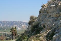 与草和丛林的山岩石 免版税库存照片