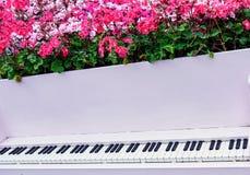 与花卉生长的装饰钢琴出于它 免版税图库摄影