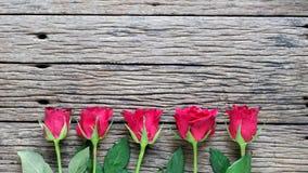 与英国兰开斯特家族族徽的情人节背景 免版税库存照片