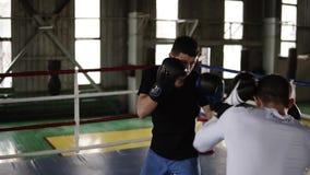 专业争吵拳击手的两个年轻伙伴圆环,实践罢工技术的,机架,防御和 影视素材
