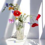 三朵红色鸦片花和不同的野花花束在水晶花瓶用水在白色桌上与对比太阳光和 图库摄影