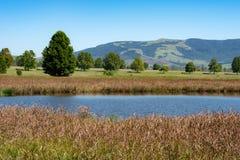 一个普遍的观鸟湖在新生米德兰平原 库存照片