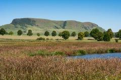 一个普遍的观鸟湖在新生米德兰平原 免版税图库摄影