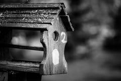 一个鸟房子或鸟箱子在夏天或春天阳光下与自然绿色离开背景 免版税库存图片