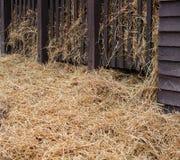 一些干草在谷仓 库存图片