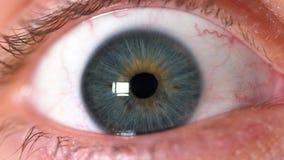 一双美丽的人的蓝眼睛的特写镜头 人` s面孔 股票视频