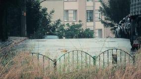 一条街道的看法有植被的在与雷和雨声音的一场重的暴雨 股票录像