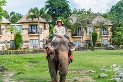 人在巴厘岛徒步旅行队&海岸公园的骑马大象 免版税库存图片