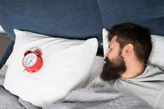 人有胡子的行家困面孔在与闹钟的床上 问题的唤醒的清早 起来与闹钟 免版税库存照片