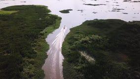 人鸟瞰图装有引擎的longtail木小船骑马的横跨沼泽地 股票视频