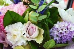五颜六色的美丽的花 夏天的颜色 免版税图库摄影