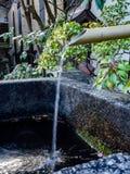 从一个竹管道的水 库存图片