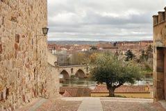 从皮萨罗的看法'街道,萨莫拉,西班牙 免版税库存图片