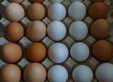 从白色和棕色国内鸡鸡蛋的背景 有机食品 免版税库存照片