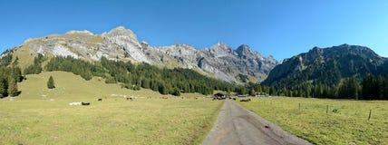 从Solalex的莱迪亚布勒雷山在瑞士 免版税库存图片
