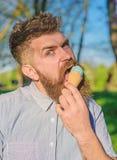 使变冷的概念 有变冷与冰淇凌的长的胡子的人在晴朗的热的天,关闭 有胡子的人和 库存图片
