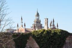修道院切尔托萨迪帕维亚塔在春天 库存照片