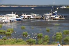 俯视海湾的夏天风景 库存图片