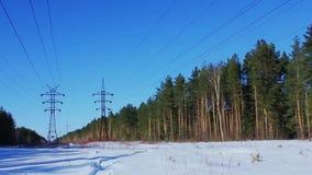 俄国 两条输电线在冬天森林里 股票视频