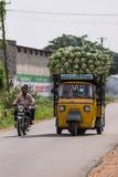 ÄFFEN Sie threewheeld LKW nach, der mit Blumenkohlen in Mysore, herein überbelastet wird Lizenzfreie Stockfotografie