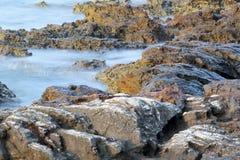 Ägäisches Ufer in Griechenland-, Thassos-Insel - Wellen und Felsen Lizenzfreies Stockbild