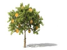 äganderätt för home tangent för affärsidé som guld- ner skyen till coins treen 3d Stock Illustrationer