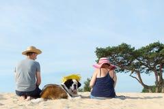 Ägare med deras hund fotografering för bildbyråer