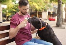 Ägare som behandlar hans bruna labrador retriever med glass royaltyfri bild