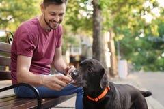 Ägare som behandlar hans bruna labrador retriever med glass royaltyfri fotografi