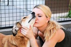 Ägare som daltar hunden Kvinnlig ägare av att dalta deras hund i trädgård arkivfoton