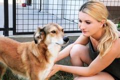 Ägare som daltar hunden Kvinnlig ägare av att dalta deras hund i trädgård royaltyfri bild