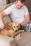 Ägare som kammar hans hund Arkivfoto