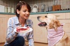 Ägare som spolierar den älsklings- hunden med mål av ny biff royaltyfria bilder