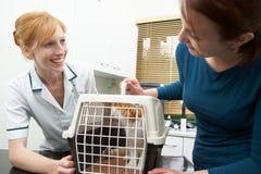 Ägare som tar Cat To Vets In Carrier arkivfoton