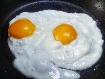 Ägg är bra Fotografering för Bildbyråer