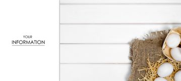Ägg av den vita hömodellen Royaltyfri Foto