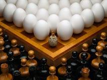 Ägg av en höna och en quail. Arkivfoton