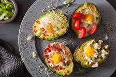 Ägg bakade i avokado med bacon-, ost-, tomat- och alfalfaspr Arkivbild