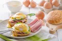 Ägg Benedict med skinka Fotografering för Bildbyråer