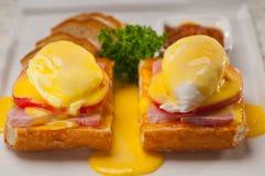 Ägg benedict på bröd med tomaten och skinka Royaltyfri Fotografi