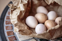 ägg brukar nytt Royaltyfri Fotografi