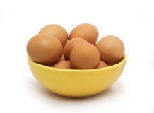 Ägg bruna ägg i gul platta Royaltyfri Bild