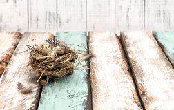 Ägg bygga bo träbakgrundspåskgarnering Arkivbilder