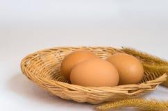 Ägg för ägg tre i korg Arkivfoto