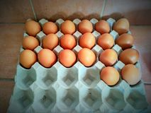 Ägg för frukost Royaltyfri Fotografi
