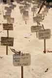 Ägg för grön sköldpadda som begravas på stranden i en sköldpaddahatchery Sri Lanka Royaltyfria Bilder